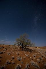 Namibia 2017 (Marianne Zumbrunn) Tags: namibia2017 namibia 2017 nikon d610 nikond610 tamron 1530mm tamron1530mm milchstrasse milkyway stars sterne light night wideangle darkness