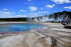 Turquoise Pool (joelledewael) Tags:
