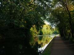 Stourbridge Canal (DG - Images) Tags: panasonicgh5 blackcountry stourbridge canal canonlens landscape serenity lumix freedom light outdoor serene water bravo themoulinrouge coalport ironbridge shropshire reflections eow magicdonkey anawesomeshot infinestyle goldenphotographer diamondclassphotographer platinumphoto the perfect photographer watercolour superhearts photofaceoffwinner mywinners outdoorbravo photo faceoffwinner