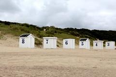 8 7 6 5 4 3 (just.Luc) Tags: beachcabins strandcabines cabinesdeplage nederland netherlands niederlande paysbas northsea noordzee merdunord dunes duinen strand plage beach zeeland holland