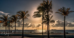 Florida Sunrise (Lgampel) Tags: beach travel florida fort lauderdale waves people sun sunny tropical tourists palmtress sand ocean atlantic view panorama sunset clouds reflections