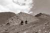 _D7K9381 (lions_italy) Tags: emilius escursioni gsv pila