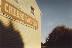 Cheese Factory (thomasdwyer) Tags: cheese factory cheesefactory fromage robertson nsw newsouthwales mossvale southernnsw australia aus sign signage typography robertsoncheesefactory dairy film analogue fujifilm kodak 400iso iso400 superia xtra fujifilmsuperia pentax pentaxmesuper pentaxkmount kmount mesuper 50mm 35mm landscape