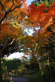秋の桜新町サザエさん公園