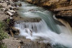 Cascading Melody (Golden Ginkgo) Tags: canyon banffnationalpark johnstoncanyon longexposure nature rocks