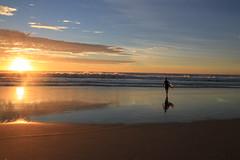 Morning Ride (BattysGambit) Tags: 2017 australia queensland broadbeach gold coast sunshine state surfers paradise surfing dawn morning sunrise ocean waves reflections reflection patrol slsc surf life saving club kurrawa canon d7 nofilter no filter manual dslr sigma 18mm250mm