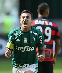 Palmeiras x Vitória (16/07/2017) (sepalmeiras) Tags: allianzparque campeonatobrasileiro palmeiras sep sã©riea vitã³ria palmeirasxvitoria16072017 sériea vitória dudu