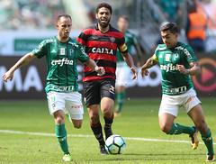 Palmeiras x Vitória (16/07/2017) (sepalmeiras) Tags: allianzparque campeonatobrasileiro palmeiras sep sã©riea vitã³ria palmeirasxvitoria16072017 sériea vitória aguerra dudu