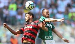 Palmeiras x Vitória (16/07/2017) (sepalmeiras) Tags: allianzparque campeonatobrasileiro palmeiras sep sériea vitória palmeirasxvitoria16072017 aguerra