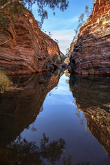 Hamersley Gorge_7715