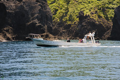 20170715-DS7_4330.jpg (d3_plus) Tags: 南伊豆 日本 scenery aiafnikkor28105mmf3545d d700 nature drive fish marinesports apnea underwater 静岡 aiafzoomnikkor28105mmf3545d 28105mmf3545af sea 路上 southizu minamiizu 自然 漁港 景色 海 魚 伊豆 watersports sky 風景 スキンダイビング 28105mmf3545 japan ツーリング ニコン 水中 plant skindiving nikon 静岡県 素潜り port street nikkor 28105mmf3545d 28105 28105mm ドライブ 植物 281053545 snorkeling zoomlense nikond700 touring diving 息こらえ潜水 ズーム 空 izu shizuoka nikon1 bloom fishingport シュノーケリング マリンスポーツ