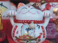 fortune cookie cat (199/365) (werewegian) Tags: cat china lims cowcaddens window shopping werewegian jul17 365the2017edition 3652017 day199 18jul17