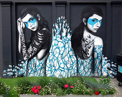 Street Art in West London (scats21) Tags: streetart graffiti findac maidavale elginavenue splash2