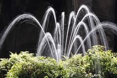 Fountain at Barcelona Cathedral (DaveStrong) Tags: canon 5d mark 5dmarkii 5dii 5d2 5dmark2 markii mark2 2 ii 24105 24105mm 24105l 24105f4 24105mml spain barcelona summer holiday vacation church sacred chapel basilica sagrada familia light cathedral