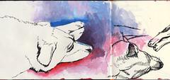 Sasha (N. Lee the Adequate) Tags: drawing painting pen brushpen acrylics sketchbook sketching dog