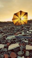Essere ciò che siamo e diventare ciò che siamo capaci di diventare è il solo fine della vita.(Robert Louis Stevenson) (ewelina.zjezdzalka) Tags: ombrello parasol paraguas umbrella ewelinazjezdzalka ewelinazjeżdżałka