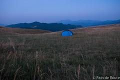Umbria, Italy (Eleonora Grampasso | Pain de Route) Tags: sibillini moutains national park horses sheeps appennino appennini marche norcia castelluccio assisi