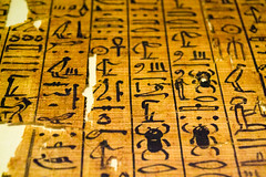 Scarab (Stray Toaster) Tags: cambridge fitzwilliam museum egyptian book dead papyrus ramose