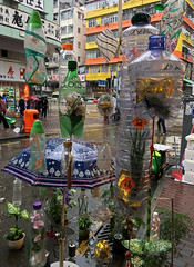 Recycled Bottles (cowyeow) Tags: garbage composition bottles art design recycled hanging plastic street city urban umbrella display weird funny kowloon china funnychina hongkong asia asian 香港 shamshuipo trash