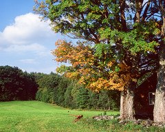 Autumn Hayfield (jwesolowski21) Tags: hayfield little red schoolhouse east charlemont massachusetts grass maple trees mohawk trail eastcharlemont unitedstates