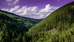 pure Nature - Harz (Skyline Image) Tags: berge mountains hills gebirge harz deutschland wolken cloud sky himmel bäume fichten wandern trekking damm oker okertal okertalsperre goslar altenau wernigerode wasser blankenburg mittelgebirge niedersachsen sonnenschein erholung