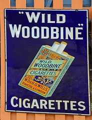Wild Woodbine. (curly42) Tags: woodbine cigarette advertising smoking svr sign enamelsign woodbinecigarettes severnvalleyrailway