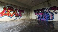 2017-07-26_12-54-32 (wiktor_furmaniak) Tags: urban urbex indoors exploration explored wall reflection graffiti art paint color spray