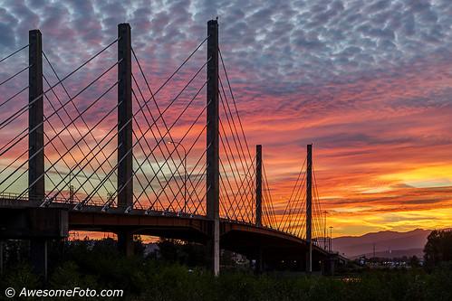 Glowing with bridge