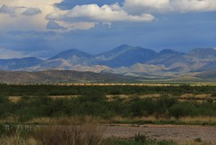 Spot The Yellow (BravoDelta1999) Tags: apache peak whetstone mountains cochise county benson arizona unionpacific up railroad southernpacific sp railway ge c418w c408 c449w emd sd60 sd60m