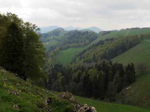 Brunnersberg_11
