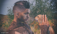 Man's Best Friend (The Essence Of Fashion) Tags: hair doux head catwa straydog signature pose bellaplace male blog secondlife portrait person