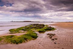 Seacliff beach in East Lothian (ola_er) Tags: beach east lothian scotland nikon