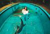 Jess (Luis Montemayor) Tags: model modelo alberca swimingpool pool blue azul fashion
