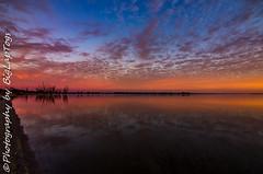 IMG_5921 (biglaptogs) Tags: barmera lakebonney riverland sa states sunsetsunrise