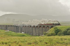 LMS Class 4-6-0 No. 46115 'Scots Guardsman' at Ribblehead - 1st Aug 2017 (allan5819 (Allan McKever)) Tags: steam loco locomotive engine lms 460 46115 scotsguardsman thefellsman railtour charter excursion westcoastrailways ribblehead yorkshire uk england countryside rural mainline settlecarlislerailway heritage travel transport viaduct structure rail railway dales