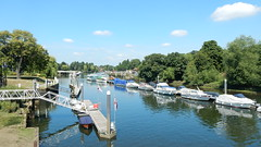 River Thames, Teddington (John Steedman) Tags: teddington london uk unitedkingdom england イングランド 英格兰 greatbritain grandebretagne grossbritannien 大不列顛島 グレートブリテン島 英國 イギリス ロンドン 伦敦 river thames riverthames