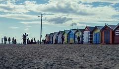 The Brighton Boxes. (Ian M's) Tags: bathing boxes brighton victoria vsco beach