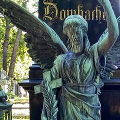 Es lebe der Zentralfriedhof ...  #ViennaCentralCemetery #Engel #angel #silence #peace #instagram #igersvienna (digital views) Tags: viennacentralcemetery engel angel silence peace instagram igersvienna