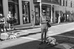 DSCF5820 2.jpg (RHMImages) Tags: summernights streetphotography dog monochrome x100f blackandwhite socks nevadacounty streetfair fuji bw nevadacity fujifilm downtown