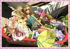 Kiera (Land of Dolls) Tags: crazygirlmisaki integrity 16thdollswagon flowers handmadejewelry handmadefashion levitation isabellefromparis