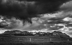 Bring in the clouds (jenni 101) Tags: monochrome blackandwhite alberta canada fence fencefriday hff watertonnp nikond7200 stormclouds stormyskies