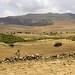 Forest landscape restoration in Ethiopia