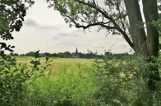 Braunschweig: Naturschutzgebiet Riddagshausen