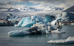 Jökulsárlón II (Jack Landau) Tags: jökulsárlón jokulsarlon iceland glacier glacial lagoon ice water iceberg mountain clouds frozen blue cyan turquoise landscape nature north jack landau