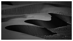 Sand Dunes of Hundar -1 (Ravikumar Jambunathan) Tags: desert dunes hunder india jambunathan ladakh leh light nature nubravalley patterns ravikumar sand shape travel