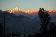 Sunset range from Munsiyari (draskd) Tags: munsiyari munsiari himalayas himalaya draskd panchachuli panchachulirange sunsetoverpanchachuli himalayanlandscape himalayanscenery scenic joharvalley goriganga nikond5000 nikon nikondslr nikkorglass uttarakhand 35mm18 kmvntrhmunsiyari