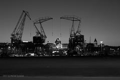 dźwigozaury - cranesaurs.jpg (MichalKondrat) Tags: polska szczecin długaekspozycja jachty zachodniopomorskie bulwary rzeka noc wałychrobrego wieczór przystań odra dźwigozaury d300s