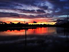 Rule #1 of life. Do what makes YOU happy.  Check out @jet7black and @jet7black_wildlife On IG (Jet7Black) Tags: sunshine californiasunset sunrise sunday texassunset sundayfunday sunflowers floridasunset idahosunset yellowstonesunset sunny sunset sun sunsets montanasunset yellowstone yellow pink red blue orange oregon orlando tampa purple cloud cloud9 clouds cloudy skyscape skylights skyline floridasky texassky bigskycountry skylight sky brazosbendstatepark clearlaketexas arkansaspass armandbayou arizona flickr instagramapp instagram twitter facebook snapchat tumblr vine visittexas visitflorida yahoo texas flower florida jet7blackwildlife jet7black travel youtube galvestonislandstatepark galvestonisland galveston keywest keylargo miami pensacola sarasota gainesville fortmyersbeach fortmyers squareformat bonitabeach clearwaterbeach clearwater
