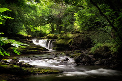 Clare GLens (Ray Moloney Photography) Tags: ifttt 500px trees leaves landscape water nature river travel light rock tree motion rocks fall leaf branches green wood waterfall cascade stream outdoors moss rainforest environment creek county tipperary clare glens no person raymoloneyphoto limerick