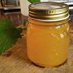 Pineapple Habanero Jelly (yummysmellsca) Tags: homegrown habaneros pineapple juice jelly pepper hot spicy sweet lowsugar pectin pomonas dolecanada parrt partylikeapineapple canning canned jar